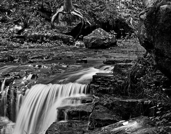 Photograph - Rock Furnace Stream Wat 118 by G L Sarti