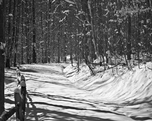 Photograph - Rock Furnace Trail Win 77 by G L Sarti