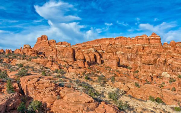 Photograph - Rock Garden by John M Bailey