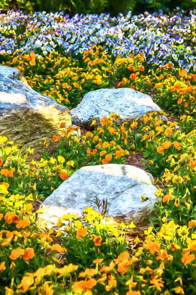 Asheville Mixed Media - Rock Garden by John Haldane