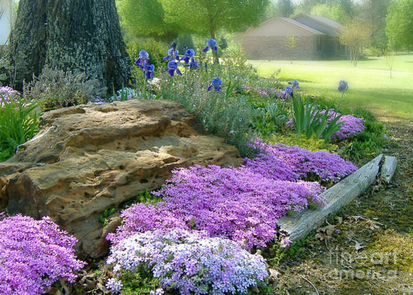 Photograph - Rock Garden by Lee Owenby
