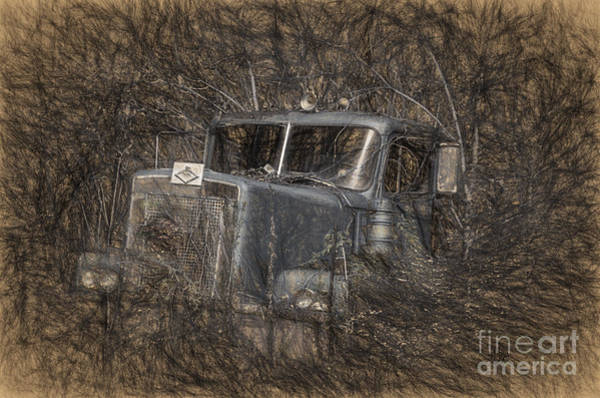 Wall Art - Photograph - Rock On Road Warrior by Lois Bryan
