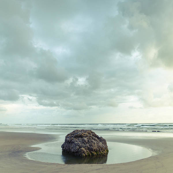 Photograph - Rock Pool by Andy Bitterer