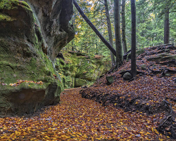 Photograph - Rock Stalls Gorge  by Jack R Perry