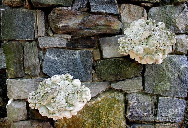 Photograph - Rock Wall  by Karen Adams