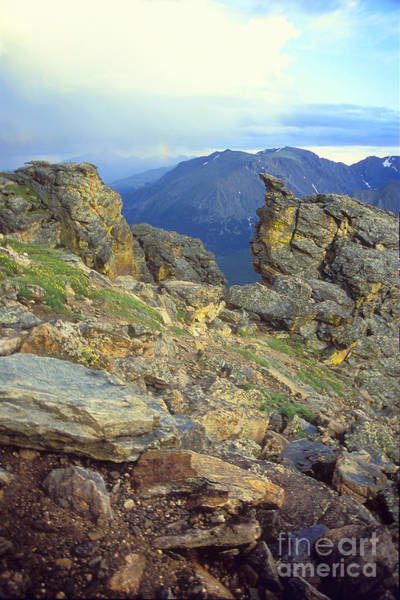 Photograph - Rockcut In Rocky Mtn National Park by Teri Brown