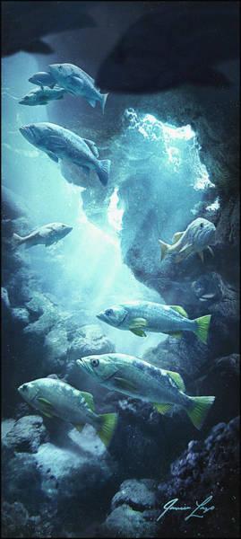Schooling Wall Art - Digital Art - Rockfish Sanctuary by Javier Lazo