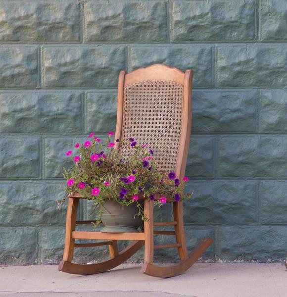Wall Art - Photograph - Rocking Petunias by Bridget Calip