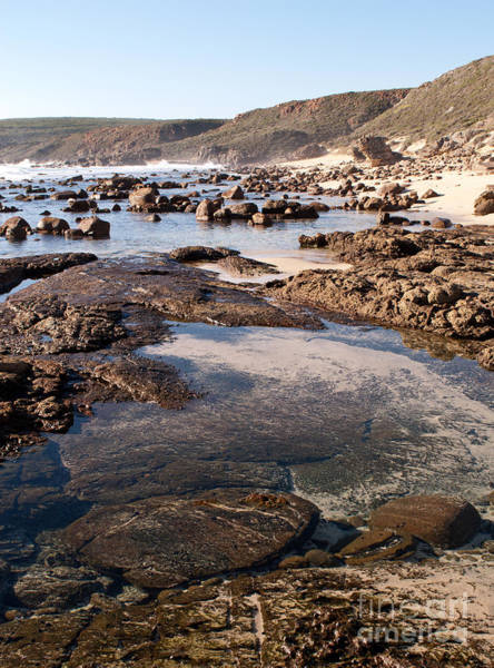 Photograph - Rockpool by Rick Piper Photography
