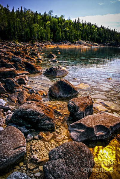 Photograph - Rocks At Shore Of Georgian Bay by Elena Elisseeva