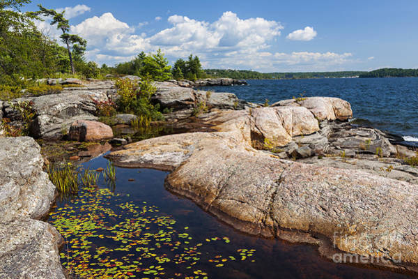 Wall Art - Photograph - Rocks On Georgian Bay Shore by Elena Elisseeva