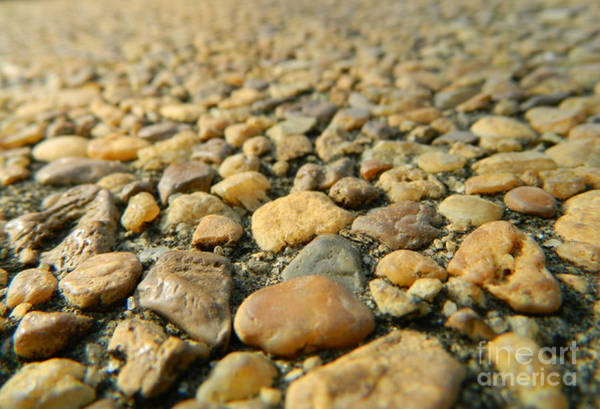 Photograph - Rocks On My Path by Andrea Anderegg
