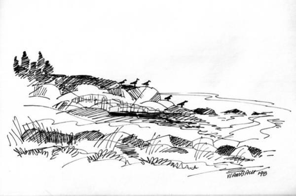 Drawing - Rocky Beach Monhegan 1998 by Richard Wambach
