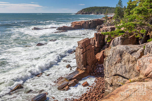 Photograph - Rocky Cliffs In Acadia by Susan Cole Kelly