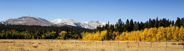 Photograph - Rocky Mountain Autumn by Marilyn Hunt