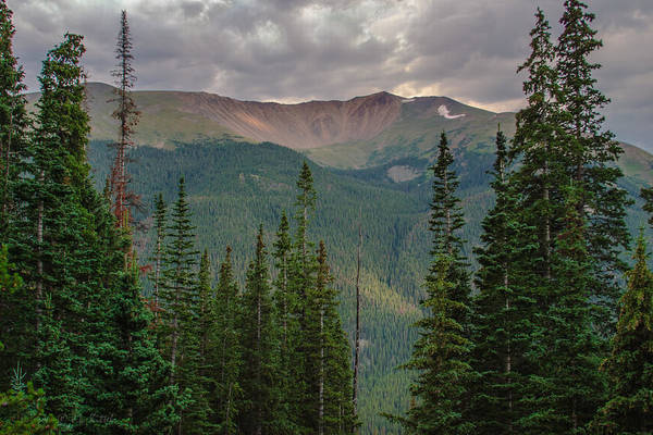 Divided Photograph - Rocky Mountain High by Medicine Tree Studios