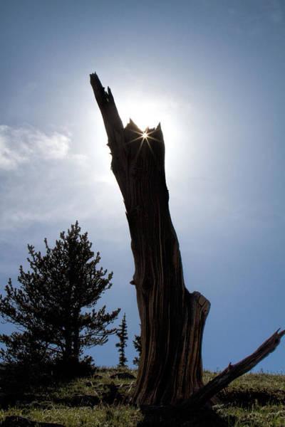 Photograph - Rocky Mountain Obelisk by Jim Garrison