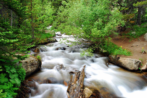 Foaming Wall Art - Photograph - Rocky Mountain Stream by Gregory Ballos