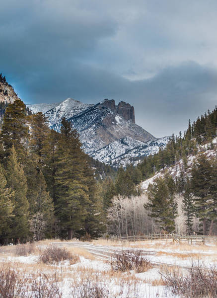 Photograph - Rocky Mountains by Fran Riley