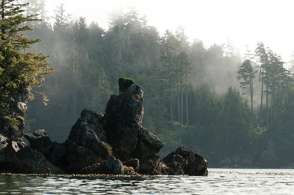Vancouver Island Photograph - Rocky Outcropping On Shore Of Broken by Stuart Mccall