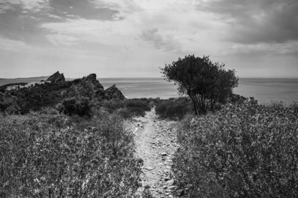 Photograph - Rocky Path To The Sea In Mono by Georgia Fowler