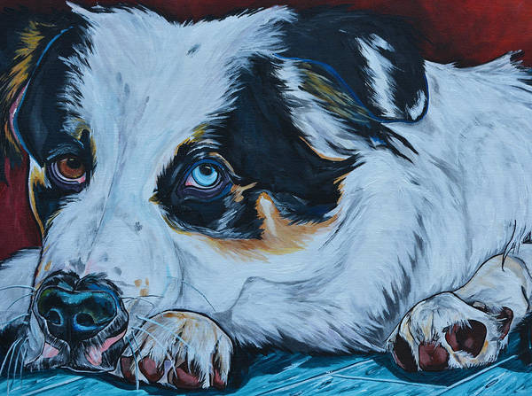 Painting - Rocky by Patti Schermerhorn