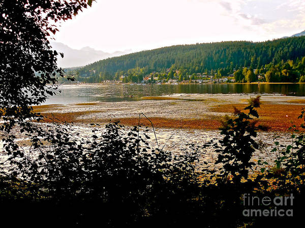 Photograph - Rocky Point Port Moody by Sher Nasser