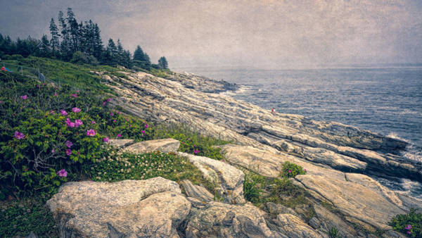 Photograph - Rocky Shore At Pemaquid by Joan Carroll