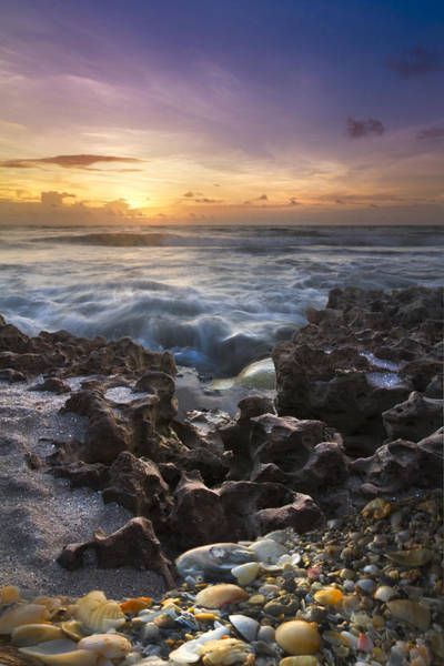 Lake Worth Wall Art - Photograph - Rocky Shore by Debra and Dave Vanderlaan