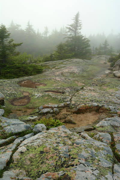 Wall Art - Photograph - Rocky View From Near The Top by Darlyne A. Murawski