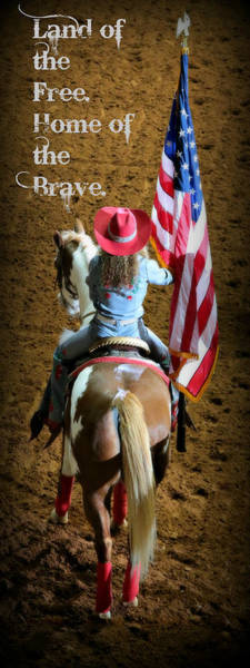 Palomino Photograph - Rodeo America - Land Of The Free by Stephen Stookey