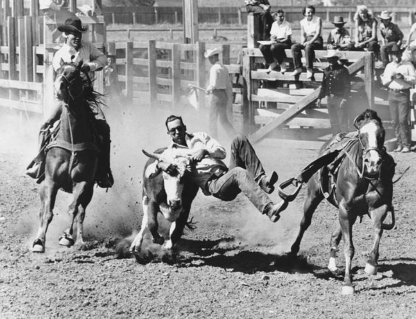 Wall Art - Photograph - Rodeo Cowboy Bulldogging by Underwood Archives