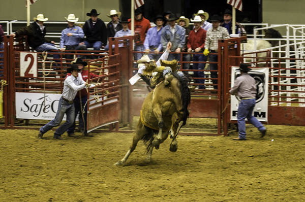 Prca Wall Art - Photograph - Rodeo by Jason Smith