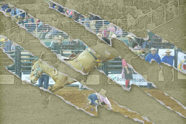 Photograph - Rodeo Ripped by Alice Gipson