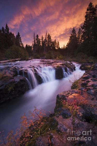 Rogue River Wall Art - Photograph - Rogue River Gorge by Sean Bagshaw