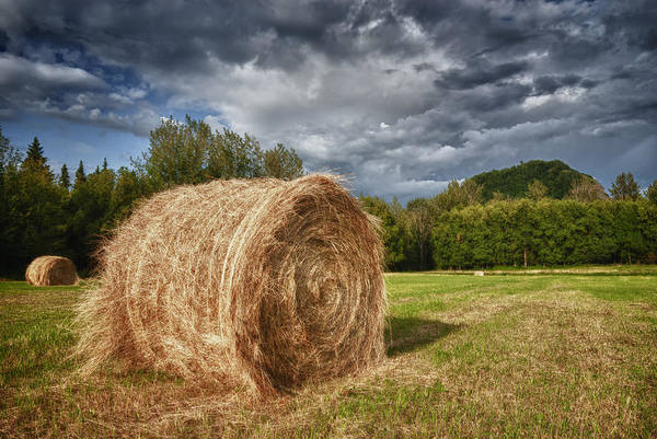 Photograph - Roll In The Hay by Ghostwinds Photography