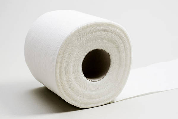 Toilet Paper Photograph - Roll Of Toilet Paper by Donald  Erickson