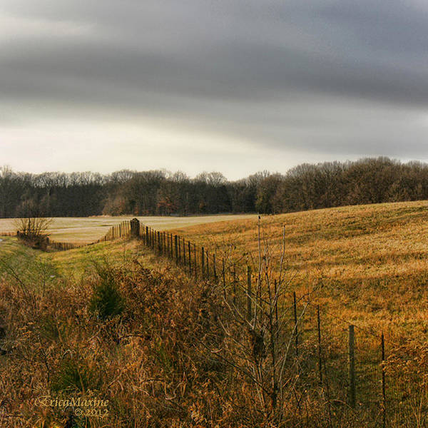 Photograph - Rolling Field by Ericamaxine Price