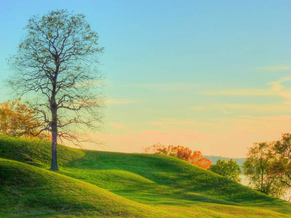 Photograph - Rolling Green by JC Findley