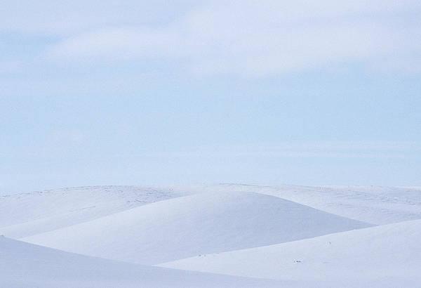 Wall Art - Photograph - Rolling Palouse Winter by Latah Trail Foundation