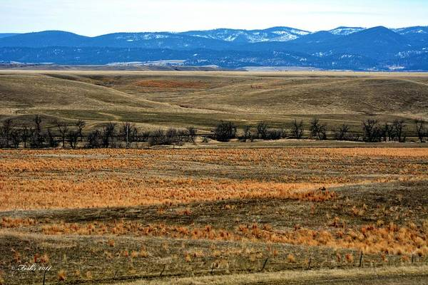 Photograph - Rolling Plains Meet The Black Hills by Fiskr Larsen