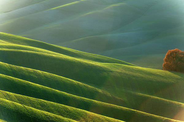 Cultivate Photograph - Rolling Tuscany Landscape At Evening by Pavliha