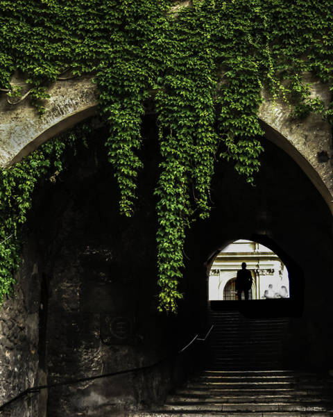 Photograph - Roman Arch by Curtis Dale