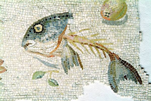 Pasquale Photograph - Roman Mosaic by Pasquale Sorrentino/science Photo Library
