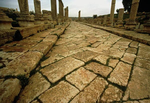 Jerash Photograph - Roman Road by Tony Craddock/science Photo Library