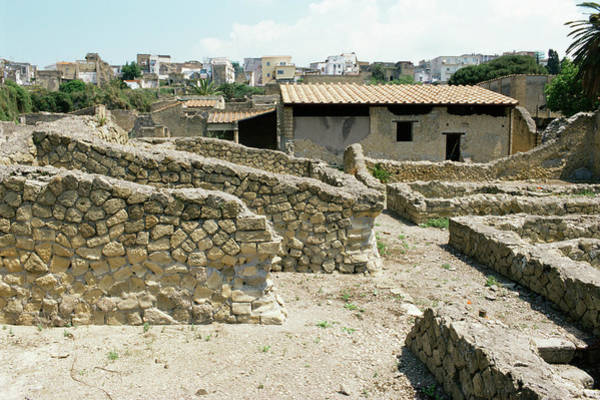 Pasquale Photograph - Roman Villa by Pasquale Sorrentino/science Photo Library