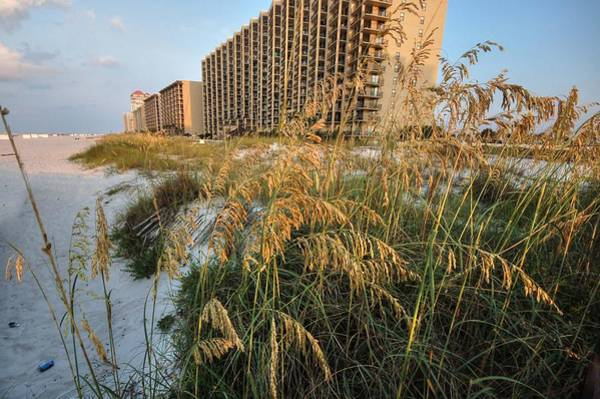 Digital Art - Romar Beach Sunrise Beach3 by Michael Thomas