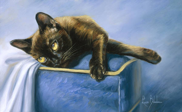 Domestic Cat Wall Art - Painting - Romeo by Lucie Bilodeau