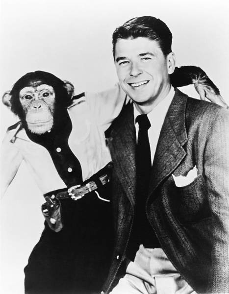 Governor Photograph - Ronald Reagan And Bonzo by Underwood Archives