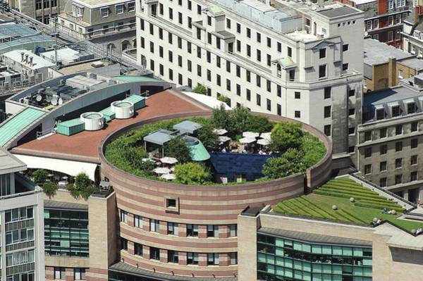 Roof Top Photograph - Roof Garden by Alex Bartel/science Photo Library